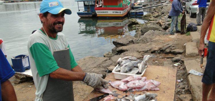 Pesca de alguns peixes é liberada durante um ano em todo o Brasil
