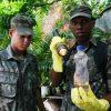Exército vai realizar ações de combate à Dengue em Guarapari