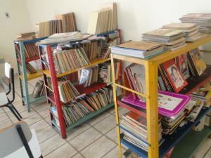 biblioteca municipal (5)
