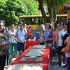 Cidadãs alfredenses homenageadas no Dia da Mulher