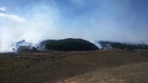 incendio apa setiba 2