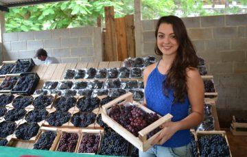 Vem aí mais uma Festa da Uva e do Vinho em Alfredo Chaves