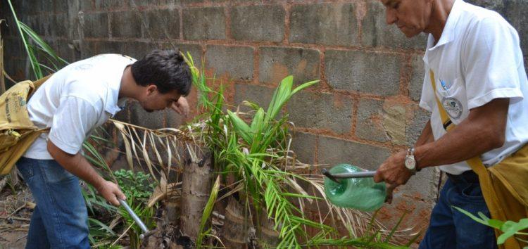 Alfredo Chaves começa 2017 em alerta contra a dengue