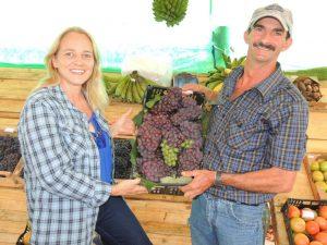 Durante a festa os produtores recebem visitantes que podem colher a fruta direto do pé. Foto: divulgação