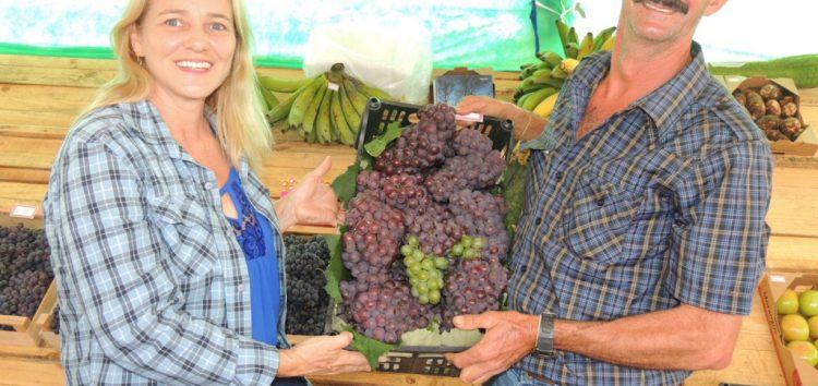 Neste fim de semana tem Festa da Uva e do Vinho em Alfredo Chaves