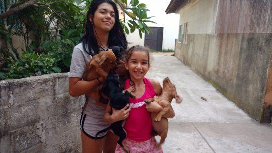 Thaís e Roberta, filhas de Rosimeri, ajudam a mãe nos cuidados com os cachorros.
