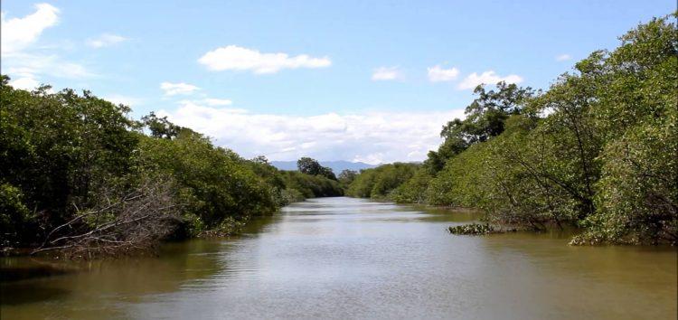 Ação ambiental pretende recolher 4 toneladas de lixo em Anchieta