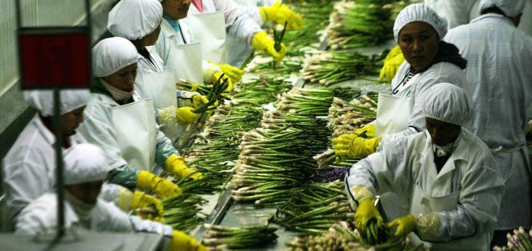 Guarapari recebe seminário de fortalecimento da agroindústria