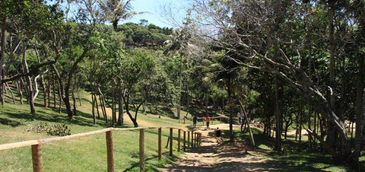 Guarapari terá semana especial em comemoração ao Dia Mundial do Meio Ambiente