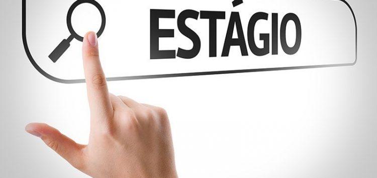 Inscrições para estágio na Educação vão até hoje (11) em Guarapari