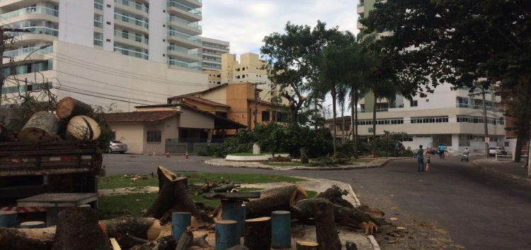 Quatro ações no MP tentam suspender corte de árvores da Prainha, em Guarapari