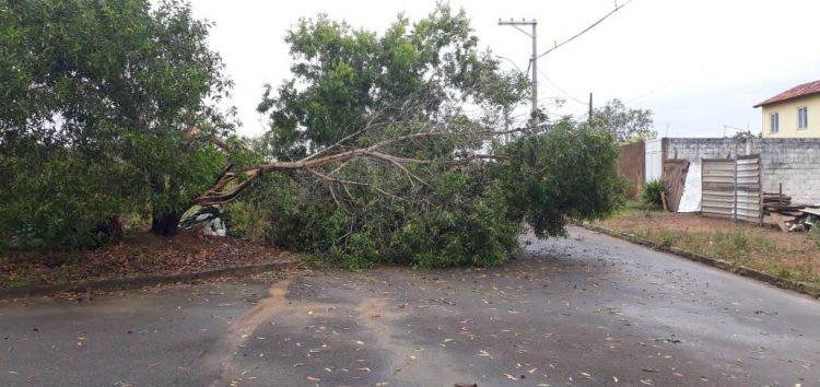 Guarapari registra chuva de granizo e danos após temporal