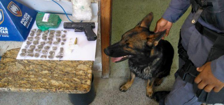 Força Tática utiliza auxílio de cão policial para efetuar duas prisões em Guarapari