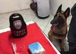 PM detém indivíduos por tráfico de drogas em Anchieta