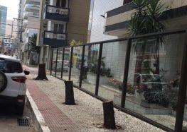 Crime ambiental: Nota esclarece corte de árvores no Centro de Guarapari