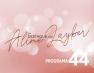 Em Destaque com Aline Layber – Programa 44