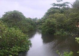 Guarapari prepara ações para recuperação do Rio de Meaípe