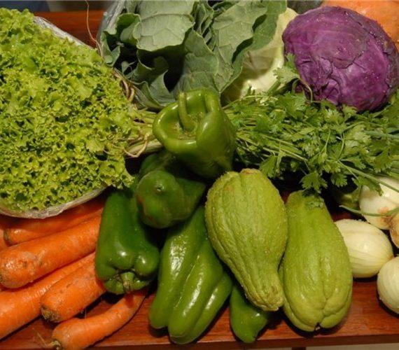 2º Encontro da Agricultura Familiar será realizado esta semana em Alfredo Chaves