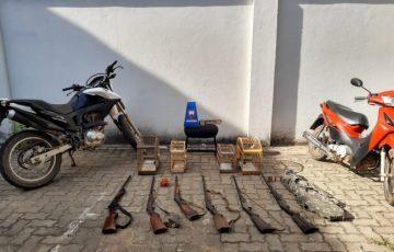 Operação apreende armas e pássaros silvestres em Alfredo Chaves
