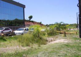 Moradores reclamam da falta de manutenção na entrada da Rodoviária de Guarapari