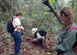 Guarapari: Sítio arqueológico é identificado no Parque Paulo Cesar Vinha