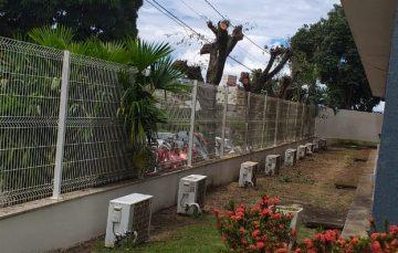 Poda de árvores na entrada da Prefeitura de Guarapari provoca questionamentos