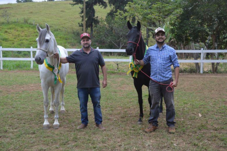 Leilões on-line salvam o mercado de cavalos em Guarapari
