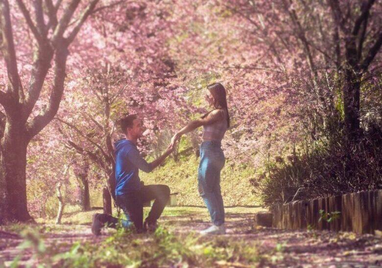 bosque-das-cerejeiras-alfredo-chaves-2021-08-05-1